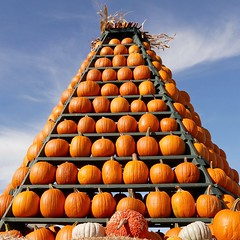 SUM PUNKINS (Rob Patzke) Tags: pumpkin pyramid orange autumn sky lumix lx100 stacked bright color looking up market clouds blue wisconsin madison