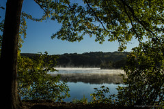 Misty Lakewood (Skyelyte) Tags: misty lake sky forest grass tree bark peaceful serene autumn autumninnewengland mist clouds mistonwater waterburyconnecticut newengland water leaves foliage wood stone morning dawn sunrise fog foggy landscape reflections explore explore1022017