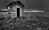 17_Oct_16_01 (Dana Prost) Tags: albertacanada bw cows field landscape ruraldecay storm