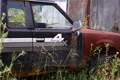 Junked (Midnight Believer) Tags: crittendencounty junk junked rusted weeds overgrown rural truck mexicokentucky