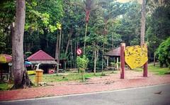 https://foursquare.com/v/taman-botani-negara-shah-alam/4de8f511d4c0faa5643bdd4a #holidays #travel #garden #green #nature #Asian #Malaysia #selangor #shahalam #度假 #旅行 #大自然 #绿色 #公园 #亚洲 #马来西亚 #雪兰莪 #沙阿南 #tree #树 #travelMalaysia #holidayMalaysia #发现大马 #Foundin