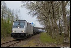 Rheincargo DE 803, Amsterdam Westhaven 01-04-2017 (Henk Zwoferink) Tags: amsterdam noordholland nederland nl rheincargo irp independent rail partner henk zwoferink de803 bombardier traxx nwb ketelwagens de