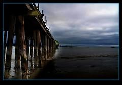 half moon bay (janetfo747 ~ I dream of Africa) Tags: halfmoonbay california pacificocean water dock cannery