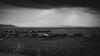 Tierra querida #V (partis90) Tags: fujifilm xpro2 fuji voigtlander snapshotskopar 25mm 40 m39 ltm sw monochrome schwarzweiss bw landscape photography