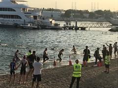 Roy Nasr Tri Swimmers Emerge 2017 (Patrissimo2017) Tags: triathlon dubaitriathlon