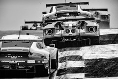 Chequered competition (speedcenter2001) Tags: 67 ford fordgt gtlm ryanbriscoe richardwestbrook scottdixon petitlemans petit competition racing race racecar racetrack motorsports rennsport braselton georgia imsa endurance sportscar 400mmf28gvr nikon400mmf28gvr d500 monochrome blackandwhite noiretblanc schwarz weiss sep2 silverefexpro2 silverefex automobile ecoboost