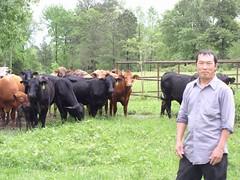 Koua Thao (USDAgov) Tags: usda nrcs farming animals breeder microloan