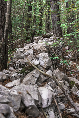 A roman stonewall in the woods (rlubej) Tags: notranjska forest structures