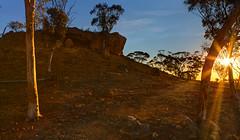 A breakaway (aycee_2000) Tags: breakaway westonia centralwheatbeltofwa
