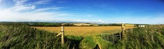 Devonport Panorama by iPhone (Puckpics) Tags: devonport plymouth rivertamar devon cornwall panorama iphone