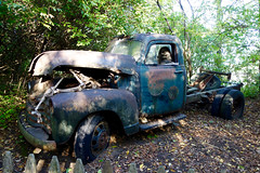 you call, we haul (KevinIrvineChi) Tags: truck rusty old antique skeleton halloween skull stare staring window tow towing woods trees outdoors sony dscrx100 kuipers family farm haunted display hood turquoise teal brown green maple park illinois country