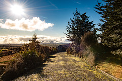 Sun is shining over the road (amcatena) Tags: sun tree road new zealand cloud
