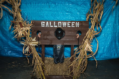 Halloween-2017 (80 of 173)