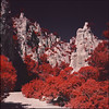Parc des Calanques (steve-jack) Tags: hasselblad 501cm 80mm cb kodak aerochrome bw 099 filter film 120 6x6 france calanques national park parc des infra red tetenal e6 kit flextight x5 scan