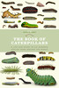 The Book of Caterpillars (Roger Wasley) Tags: thebookofcaterpillars book publication ivypress caterpillars larvae butterfly butterflies moths insects explore