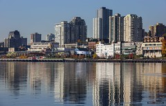 New Westminster Skyline (Clayton Perry Photoworks) Tags: vancouver bc canada fall autumn explorebc explorecanada surrey trees colours leaves skyline newwestminster brownsvillebarbeach fraserriver reflections buildings