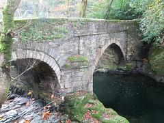 Denhambridge West Devon SX 477678 (Bridgemarker Tim) Tags: denhambridge westdevon bucklandmonachorum berealston tavyriver oldbridges devonbridges bridgemarkers