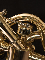 Macro Mondays: Musical Instruments (Brian Dunning) Tags: macromondays musicalinstruments canon eos7dmarkii ef100mmf28lmacroisusm memberschoicemusicalinstruments