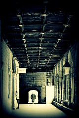 Ghost at the Cloister (Maria Chanourdie) Tags: durhamcathedral durhamcathedralcloisters harrypotterfilmplaces newcastle durhamcity magic ghost fantasma people gente england inglaterra reinounido unitedkindom bw blancoynegro blackandwhite monochrome vacations vacaciones trip viaje travel muro techo cloister claustro cathedral catedral