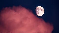 rose moon cushion (seidchr) Tags: sky blue night clouds moon rose cloud rosa mond blau nacht wolken himmel cushion moond 500px