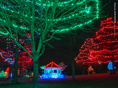 Holiday Lights in Lenexa, 23 Dec 2016 (photography.by.ROEVER) Tags: lights christmaslights holidaylights lightdisplay lenexa kansas joco johnsoncounty sarkopartrailspark december 2016 december2016 color colour colors colours usa