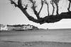 cadaques-0302 (L.la) Tags: cadaques catalogne espagne espana eu europe europa europeonflickr noiretblanc nb blackandwhite bw lc29 film argentique minolta prod20s compact ilford hp5 hp5plus ilfordhp5 scanner epson v600 epsonv600 laurentlopez lla voyage travel mer sea seascape seaside