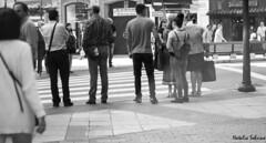 . (Natalia Sobrino) Tags: oviedo asturias urban urbana fotografía photography black white blanco y negro n byn bw b w people shadows contrast contraste light luces luz oscuridad formas shapes 50mm canon cat building church street edificio calle iglesia