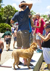 Dog Owner (LarryJay99 ) Tags: urban intercoastalwaterway urbanites lakeworth smallcity water strangers florida bryantpark palmbeachcounty candid fourthofjuly boatraces people unsuspecting flipflops flickr legs hairylegs butts barfuss backs mantags man men guys guy dude butt festival braghettoni