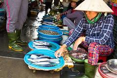 2017_04_09HoiAn83 (Andi [アンデイ]) Tags: vietnam hoian streetphotography street streetview people market travel travelphotography asia southeastasia seasia canon sigma sigmalens sigmaa