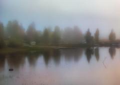 (Topolino70) Tags: nokia lumia 930 fall autumn ruska syksy mist fog sumu usva ranta shore beach lake järvi heijastus reflection puu tree finland