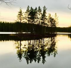 Kilsbergen (annsphoto) Tags: vildmark naturreservat natur hiking kamera fotograf forrest svamp mountainbike mountain stigar skog berg småvägar art skuggor höst grill bad sjö vatten närke kilsbergen exellent