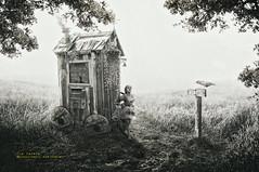 there is no place like home (olgavareli) Tags: olga vareli shack crow chicken fairy tale dream black white little house chimney path story wheelhouse magic realism
