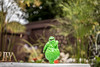 doing the Boogie Oogie Oogie (Dotsy McCurly) Tags: boogieoogie arttoy nightmarebeforechristmas halloween fun yard plants grasses nature beautiful landscape 7dwf nj newjersey canoneos80d efs35mmf28macroisstm boogieman
