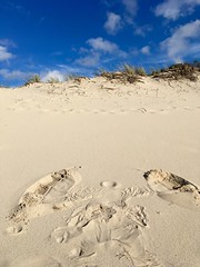 Sand Angel (Beach_Walker) Tags: capecod barnstable sandyneck beach bluesky
