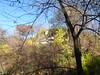 Minnehaha Park 171022_049 (jimcnb) Tags: 2017 oktober minnehaha minneapolis minnesota