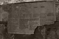 _MG_8131 (daniel.p.dezso) Tags: kiskunlacháza kiskunlacházi elhagyatott orosz szoviet laktanya abandoned russian soviet barrack urbex ruin theatre wall