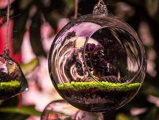 Inside bubble