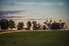 Bluegrass country (sniggie) Tags: keeneland kentucky lexington manchesterfarms bluegrass horse thoroughbred
