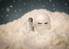 Snow Trooper (that_brick_guy) Tags: