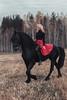 IMG_5280 2 (Katerina Dorohova) Tags: horse frieshorse blackhorse horses ladyinred photoshootwiththehorse autumn