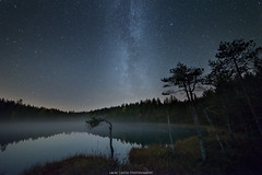 Autumn Night. (laurilehtophotography) Tags: syksy2017 d610 nikon suomi finland leivonmäki nationalpark milkyway star starrysky forest swamp marsh lake water reflections sky night autumn fall astrophotography samyang 14mm fog mist landscape nature nightshot longexposure