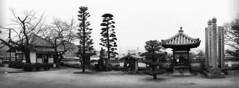 Kanryuji temple (Sacule) Tags: kanryuji temple buddhist pasted panoramic panorama okayama honsu blackandwhite contrast japan asia buddism buddha buda wide canon 600d sigma1770 photoshop oriental nippon japon templo
