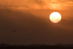 Estero Sunrise (tropicdiver) Tags: bokeelia florida matlacha boat clouds dock drawbridge fishermen fishingpier gulfofmexico palmtrees pineislandsound sunrise sunset