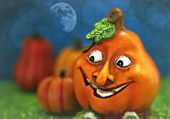 The happy side of pumpkin 🎃 (Through Serena's Lens) Tags: hmm macromondays halloween pumpkins clay figurines dof moon orange colorful bokeh stilllife 7dwf