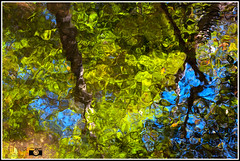 Reflejos en el río, que parecen acuarelas. (Izaskun Insausti) Tags: reflejos rio fotonaturaleza natura natur nature river reflection water agua ura erreka otoño autumn udazkena koloreak color colores igerrak acuarelas photography foto fotografía nikon nikkor izaskuninsausti shot shotz shots octubre october urria exposure foconorte atmósfera flickr verde green azul blue hiking tree trees foliage