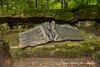 Commemorative Plaque - Wolf's Lair, Poland (Anna Calvert Photography) Tags: poland polska forest trees nature landscape wolf'slair hitlers lair nazi bunkers secondworldwar german gierloz ketrzyn commemorativeplaque