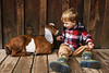 Instant friends (Elizabeth Sallee Bauer) Tags: 2yearold active bonding boy brown child childhood farm farming feeding friends goat homesteading kid livestock outdoors outside plaid raising together togetherness warmtones youth