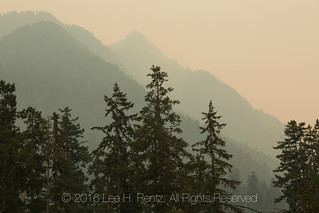 Forest Fire Haze in Olympic National Park