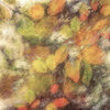 279/365 (Jane Simmonds) Tags: iphone multipleexposure icm leaves autumn beech blur 277365 3652017 tree woods