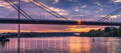 Sava-River-Belgrade-New-Railway-and-Ada-Bridges-3 (Predrag Mladenovic) Tags: belgrade sava river ada bridge newrailway gazela sunset twilight reflections citylights